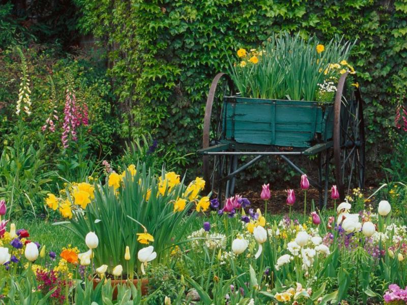 Wiosna na żoliborzu ....